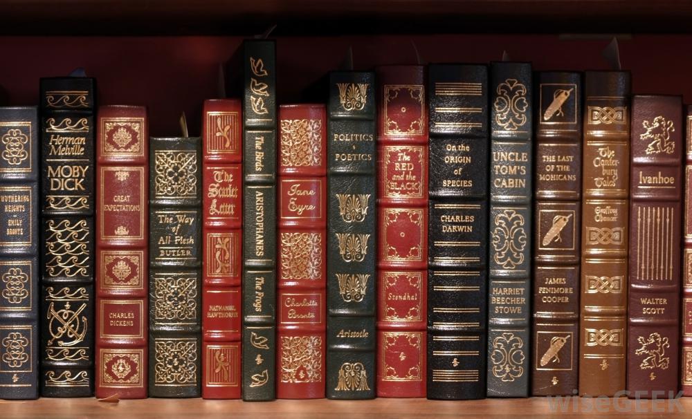 classic-novels-on-shelves