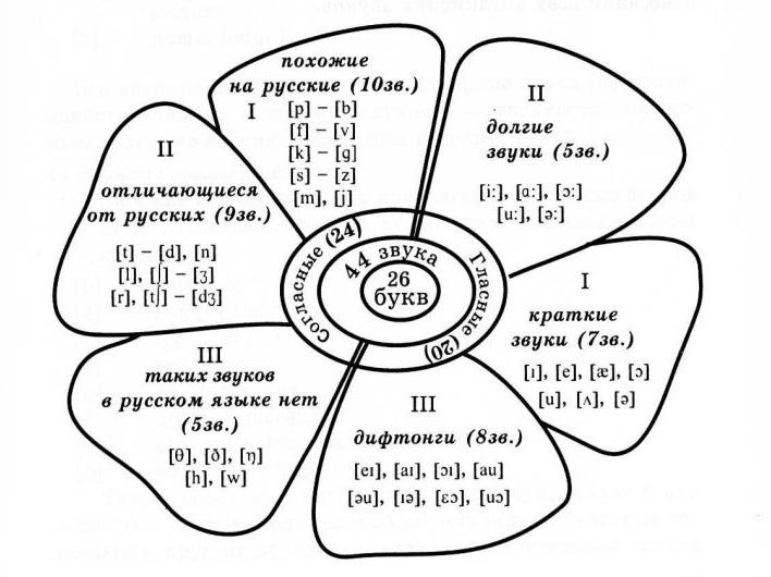 Различия русской и английской фонетики