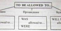 Урок английского - местоимения