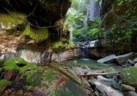 Nature Of Australia - Природа Австралии