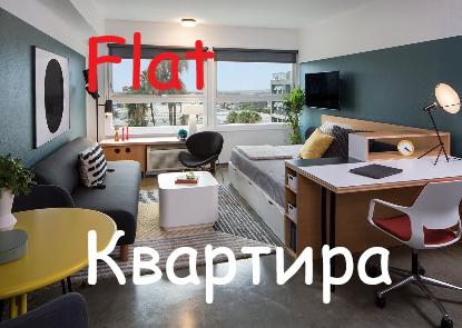 Flat Kvartira