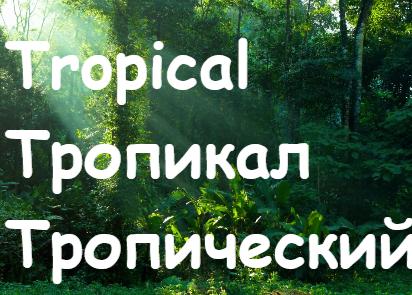 Tropical Tropicheskij